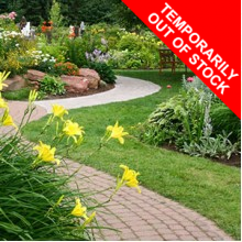 ORNAMENTAL LAWN              **OUT OF STOCK**