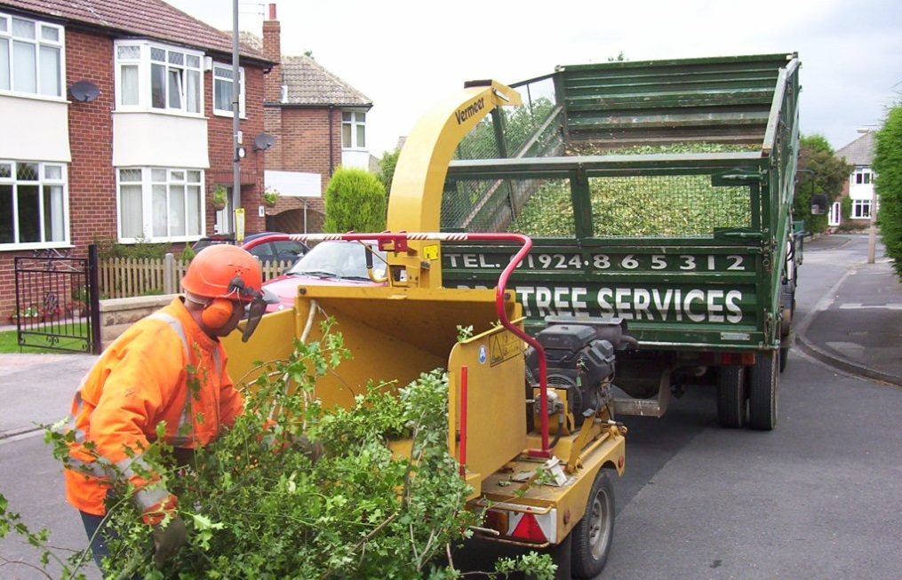 Yorkshire Tree Services