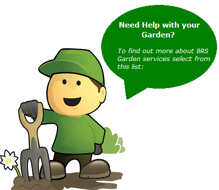 Tree-services-yorkshire